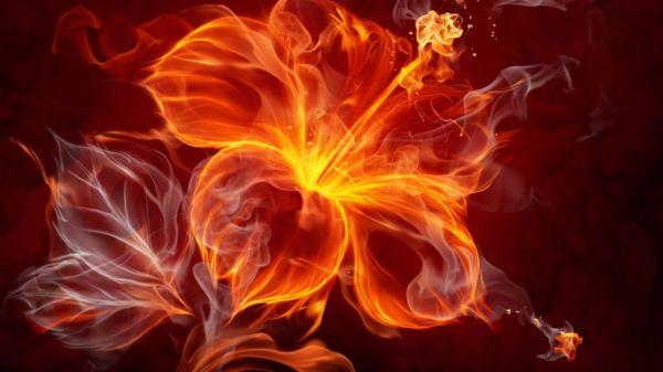 знаки зодиака огненной стихии