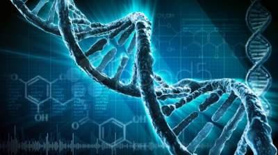 алкоголь повреждает ДНК